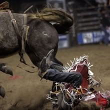 "View ""Toughest Cowboy Rodeo"""